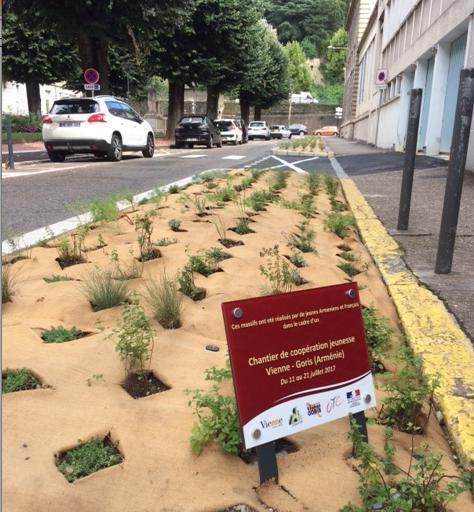 Vienne Goris : chantier d'été