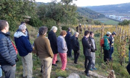 L'occasion de découvrir les 18 viticulteurs de la rive gauche: Pressailles samedi sur les coteaux de Seyssuel