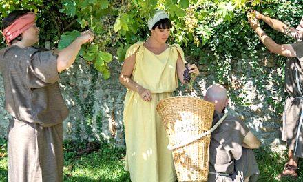 Des Vinaliafestives : vendanges à la romaine demain au musée de Saint-Romain-en-Gal