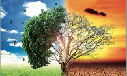 «Le plus grand défi de l'histoire de l'humanité»: l'appel de 200 personnalités pour sauver la planète