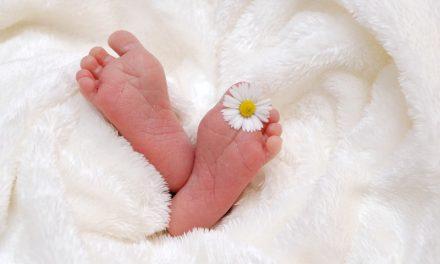 Le carnet : naissances, décès, du 1er  au 7 janvier 2019