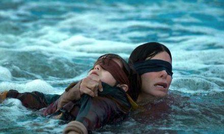 Issu d'un film de Netflix: la gendarmerie du Rhône met en garde contre le Bird Box Challenge…