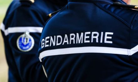 En lien avec un récent suicide? Macabre découverte sur les berges du Rhône à Chavanay