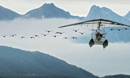 «Donne-moi des ailes» : avant-première mardi aux Amphi à Vienne du film-événement en présence de Nicolas Vannier