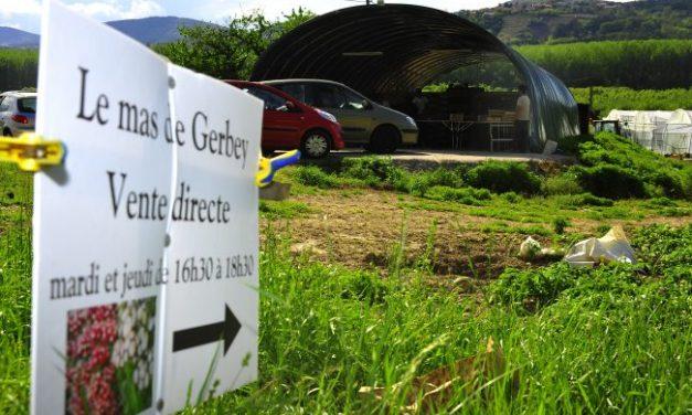 Suppression des marchés de plein air dans l'Agglo : une carte interactive pour être approvisionné par les producteurs locaux