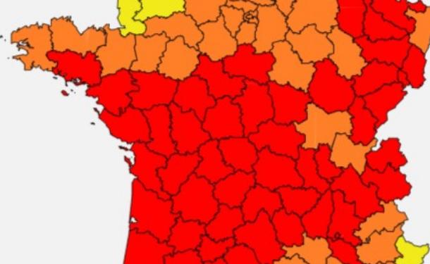 Allergies : alerte rouge aux pollens de graminées dans le Rhône et l'Isère