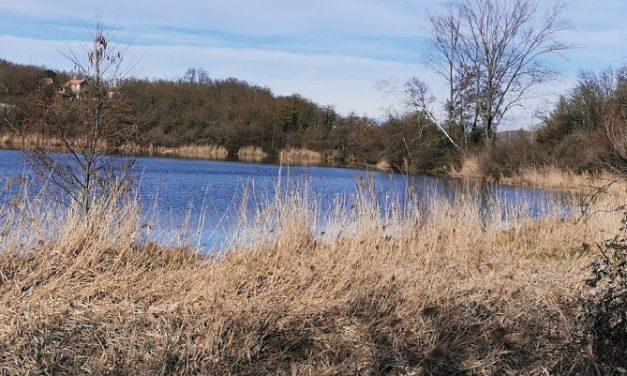 Un corps retrouvé dans un étang près de Villefontaine : celui de l'étudiante disparue, Victorine