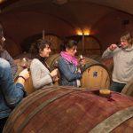 Les nectars de 14 domaines à déguster : les Pressailles auront bien lieu samedi 31 octobre sur les deux rives du Rhône