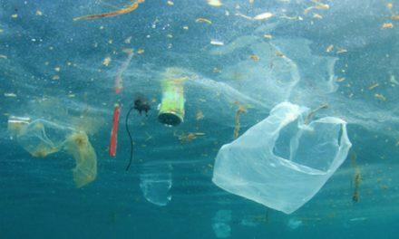 Adhésion à une charte ambitieuse : Vienne, ville sans plastique?