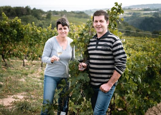 Du 5 au 7 mars : le salon des vins bio aura bien lieu à Condrieu, mais de manière dispersée, en 4 caves…