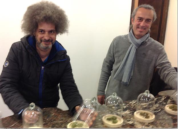 Le premier magasin vendant à Vienne du CBD (cannabis light) a ouvert ses portes ce matin