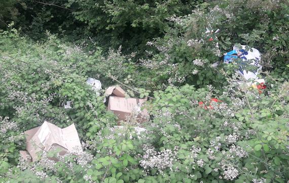 """Un habitant pris sur le fait : Chasse-sur-Rhône décrète la """"tolérance zéro"""" contre les dépôts sauvages"""